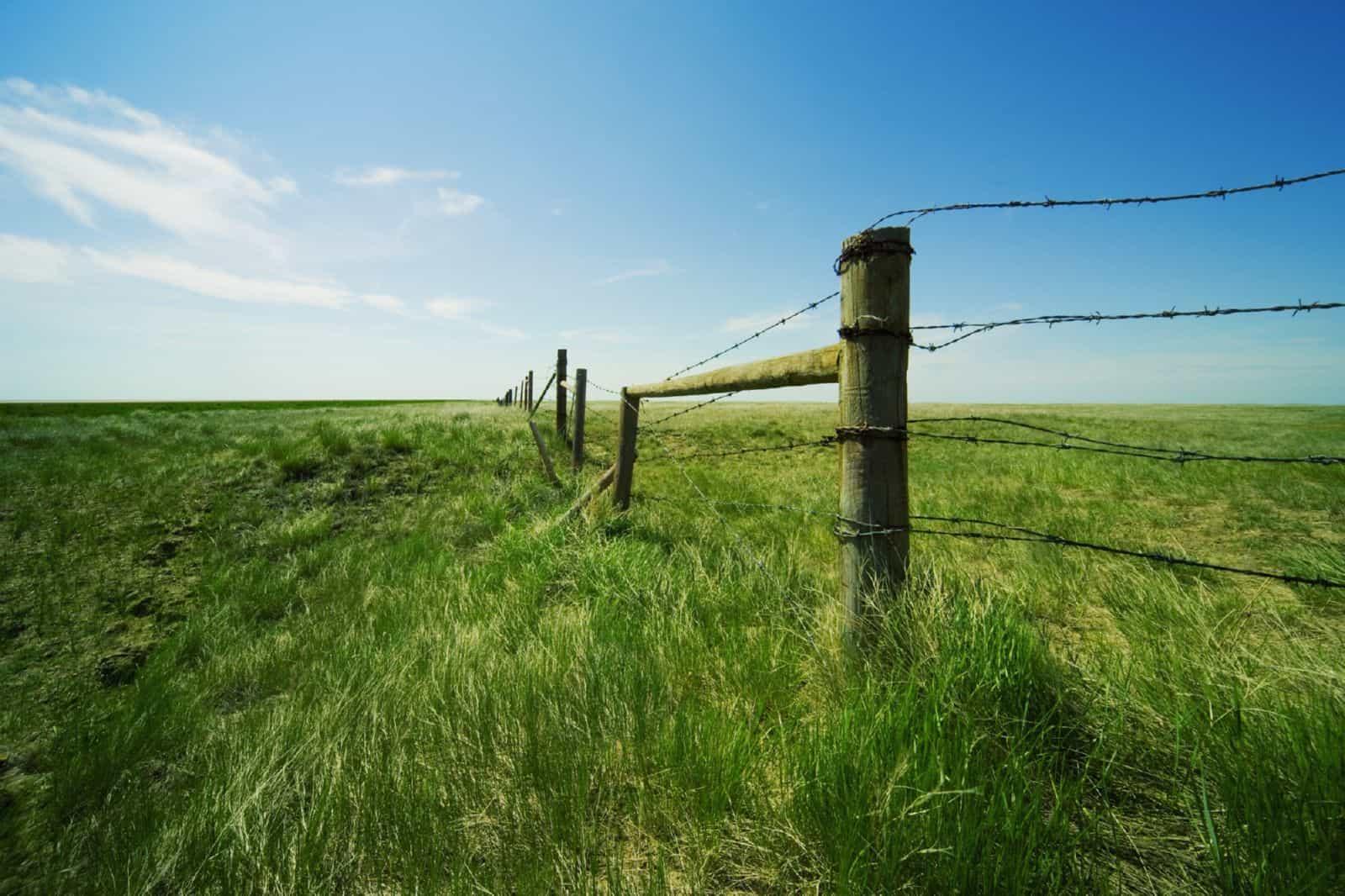 Земельный участок без координат и границ - что это значит, что делать, если границы не установлены